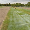 GrassMesh - Growing In ground protection | Ground Guards | Ground Protection Mats