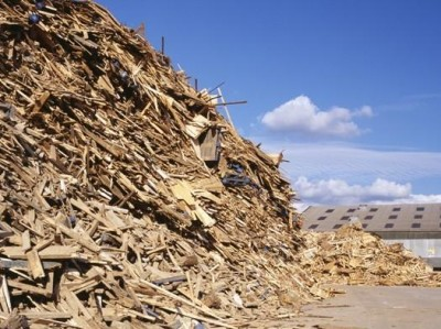 Plywood contributes to landfill